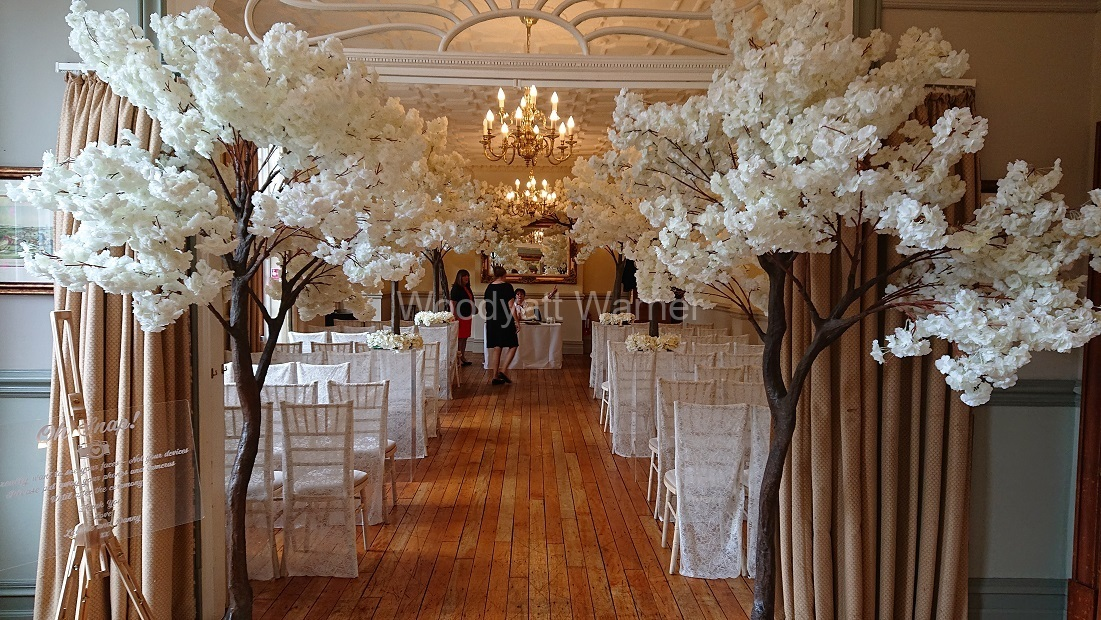 Free-standing-trees-Nunsmere-Hall