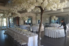 Canopy-trees-Merrydale-Manor