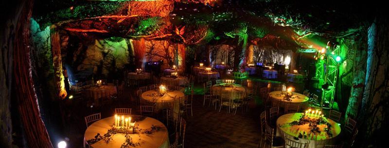 u00bb enchanted forest party woodyatt warner wood centrepieces wedding wooden centerpieces wedding